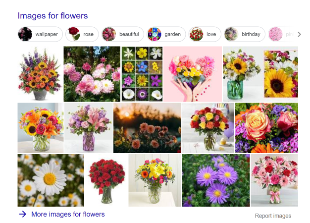 Image SERP example